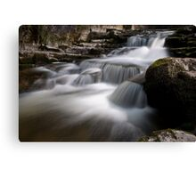 Lower West Burton stream Canvas Print