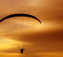 Golden paragliding by Nordlys