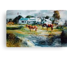 Horses by the Cottages - Allendale East, South Aust   Canvas Print