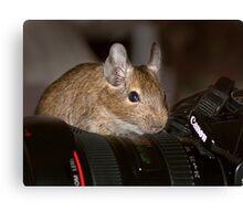The Photographer Canvas Print
