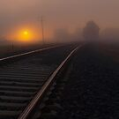 Misty Tracks by Kylie Moroney