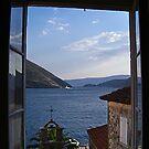 Window With a View by Danica Radman