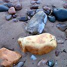 Low tide on the beach reveals treasures by patjila