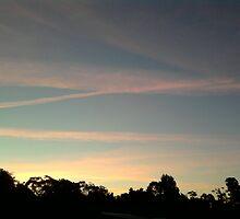 z the sky by jaw91