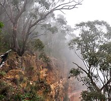 Blue Mountains NSW - Perry's Lookdown by Bev Woodman