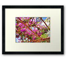 Positano's Purple Bougainvillaes Trellis Framed Print