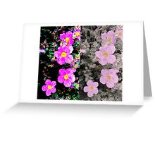 Manipulated Flowers Greeting Card