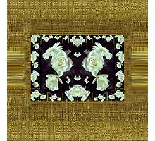 Cool roses in a gold landscape Photographic Print