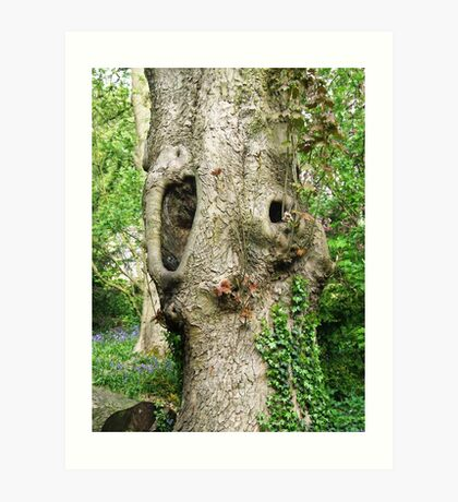 Shout Out! Ruined Tree, Shipley, Derbyshire Art Print