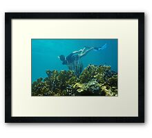 Man underwater snorkeling over a coral reef Framed Print