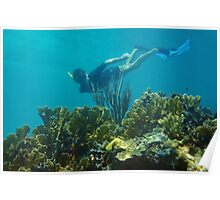 Man underwater snorkeling over a coral reef Poster
