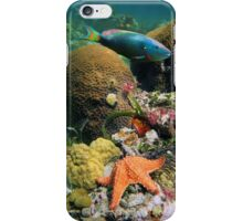 Underwater seabed with coral fish and a starfish iPhone Case/Skin