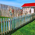 FENCE AND SHED by Chuck Wickham