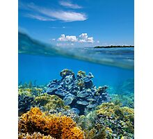 Over-under split view coral reef underwater Photographic Print