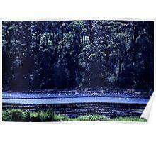 wallaga lake. southeast nsw coast Poster