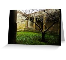 Tree in Pompeii Greeting Card