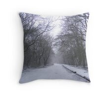 Woods in the winter. Throw Pillow