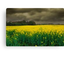 Storm is on its Way Canvas Print