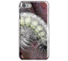 Unknown Caterpillar iPhone Case/Skin