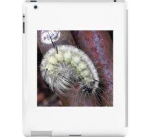 Unknown Caterpillar iPad Case/Skin