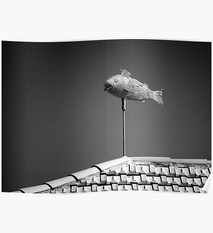 Flying fish. Poster