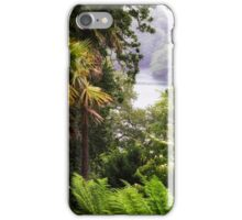 VIEW TO THE RIVER iPhone Case/Skin