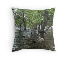 Floating Log- Willow Lake Throw Pillow