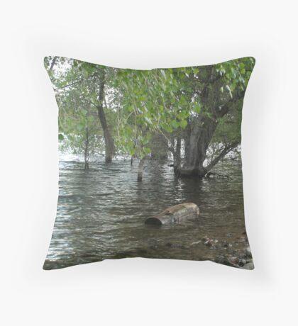 Floating Log- Willow Lake Throw Pillow