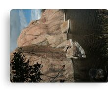 Fallen Rock- Willow Lake Canvas Print