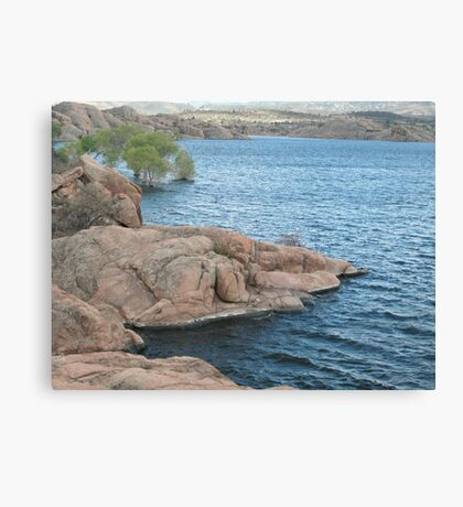 Waters Edge- Willow Lake Canvas Print