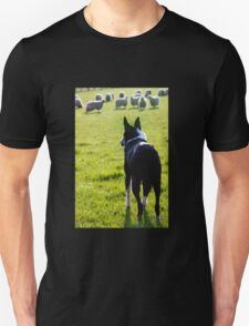 Working Collie T-Shirt