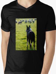 Working Collie Mens V-Neck T-Shirt