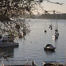 View of Sydney Harbour from Drummoyne by Vanessa Pike-Russell
