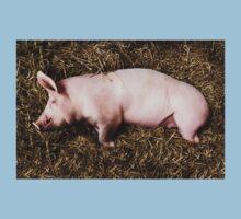 Let Sleeping Pigs Lie One Piece - Short Sleeve