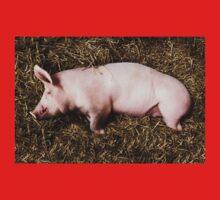 Let Sleeping Pigs Lie Kids Tee