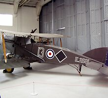 Bristol F2b fighter  by mike  jordan.