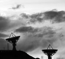 Communications in Black and White by Bo Insogna