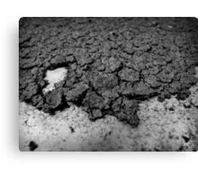 Cracks Canvas Print