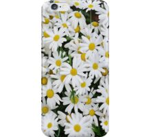 Spring Daisies iPhone Case/Skin