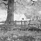 Dream Cottage by Ann Garrett