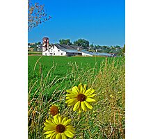 Country Spring ©  Photographic Print