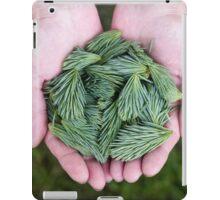 Pine Green, Spine Clean iPad Case/Skin