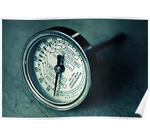 Meat Thermometer Poster