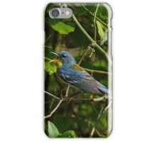 Northern Parula  iPhone Case/Skin