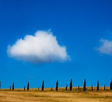 Tuscan Cypress by Andrew Bret Wallis