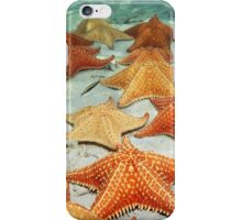 Sea stars on sandy ocean floor iPhone Case/Skin