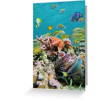 underwater sea life colors Greeting Card
