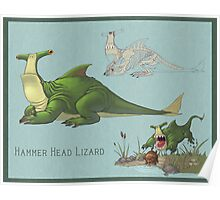The Hammer Head Lizard Poster