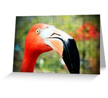 Flamingo Face Greeting Card