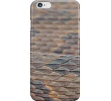 Scales of a Water Snake iPhone Case/Skin